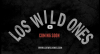 'Los Wild Ones' Wins JDIFF Audience Award 2014