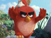 Film Review & Trailer: Angry Birds