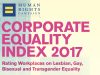 US: Corporate Equality Index 2O17-Top Firms Include Ebay, Ernst & Young, Apple andYahoo
