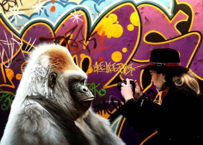 woman with camera and gorilla
