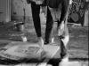 Jean-Michel Basquiat exhibition