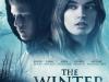 Irish Film: The WinterLake